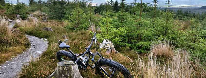 bike in wicklow woods