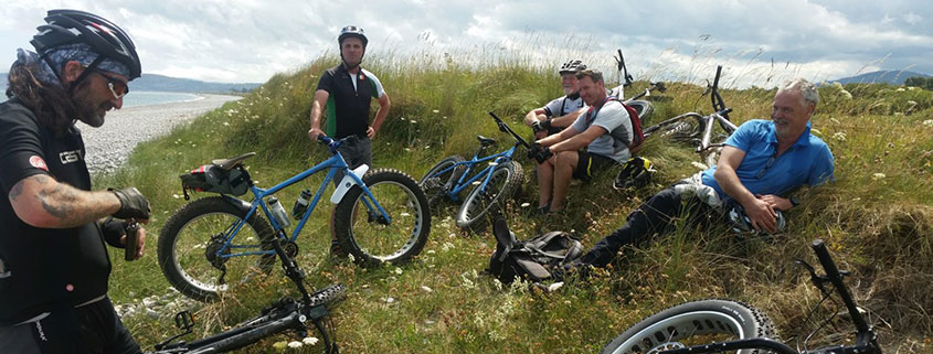 bikes in grass